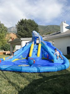 shark tank water slide dual slides kids play